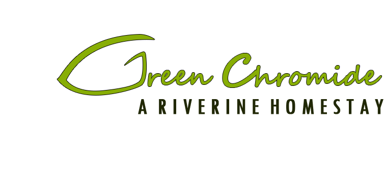 Green Chromide Munroe Homestays